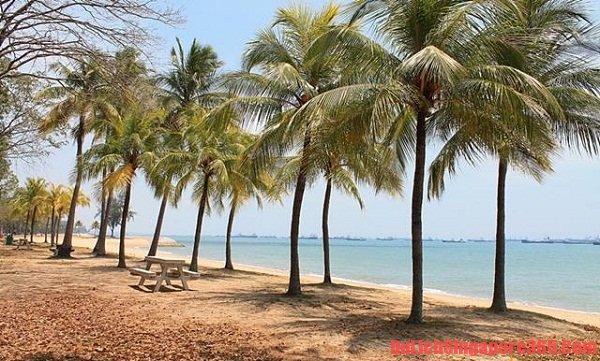 Palawan bãi biển đáng tới nhất Singapore trong mùa hè này