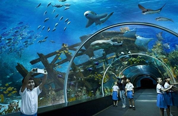 Những điểm du lịch đẹp nổi tiếng nhất định phải tới khi đến Singapore