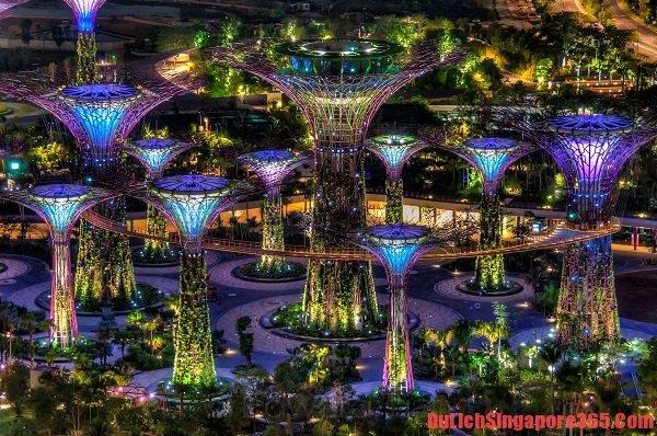 Điểm du lịch không mất phí tại SIngapore đẹp