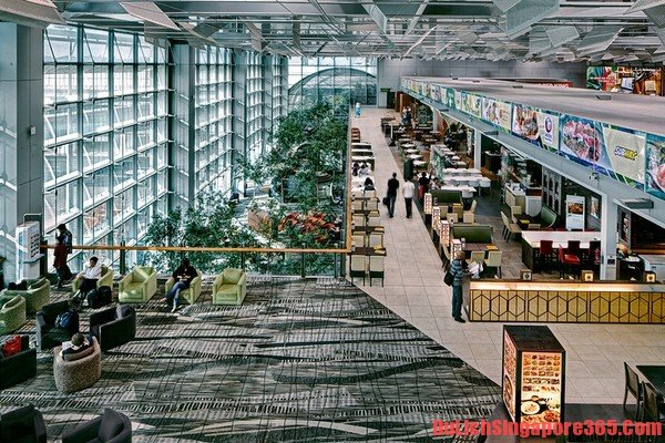 Điểm du lịch miến phí đẹp sân bay Changi tại Singapore