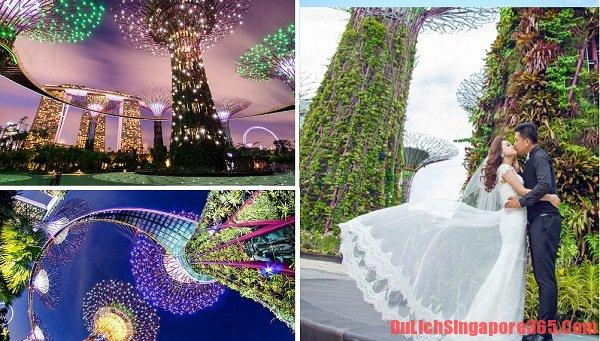Địa điểm chụp ảnh cưới đẹp tại Singapore lí tưởng tráng lệ không nên chối từ. Gaden by the bay công trình mang tầm quốc tế xứng đáng là điểm chụp ảnh lí tưởng của bạn.