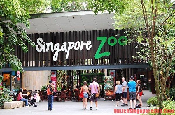 Kinh nghiệm du lịch vườn thú đêm Singapore hữu ích. Vườn thú đêm duy nhất trên thế giới