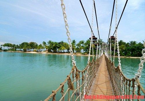 Cùng khám phá những cây cầu đẹp, ấn tượng tại singapore