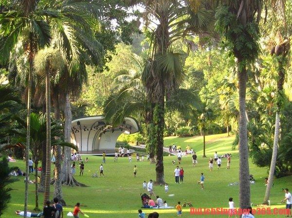 Vườn thiếu nhi hấp dẫn tại vườn Bách thảo Singapore. Hướng dẫn tham quan vườn Bách thảo Singapore chi tiết nhất