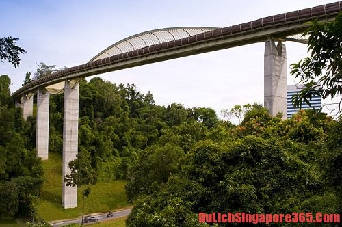 Đi dạo quanh công viên là trải nghiệm thú vị và mới lạ ở Singapore