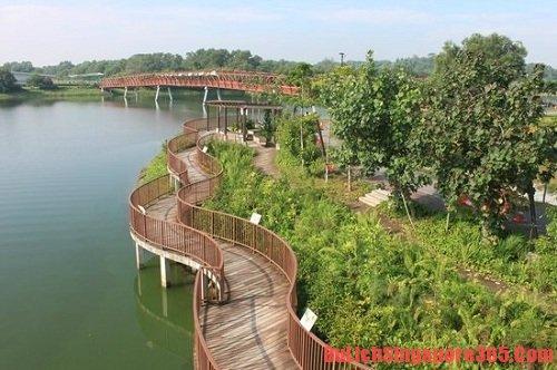 Nơi bạn nên đến khi đến Singapore nhiều lần