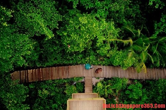 Khám phá hòn đảo thiên đường ở SIngapore Pulau Hantu - Kinh nghiệm du lịch Đảo Quỷ - Singapore