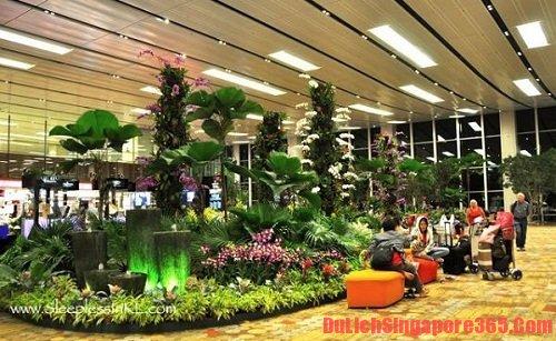 Quá cảnh ở sân bay có phải làm thủ tục nhập cảnh