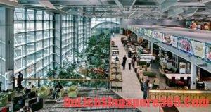 Hướng dẫn nghỉ ngơi ở sân bay Changi an toàn, thoải mái
