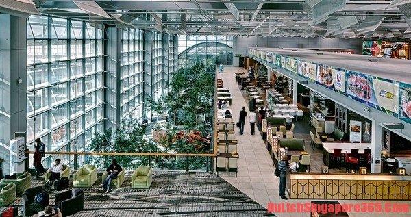 Ngủ bụi ở sân bay Changi cách tiết kiệm hi du lịch Singapore