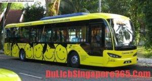 Phương tiện đi từ sân bay Changi vào Singapore phổ biến nhất