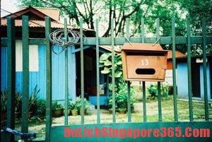 Đến Singapore nhiều lần nên đi đâu? Địa điểm hoang sơ ở Singapore