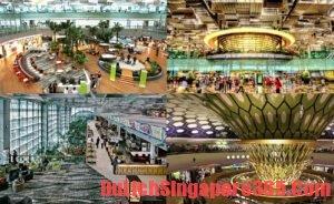 Quá cảnh Singapore có phải làm thủ tục nhập cảnh không?