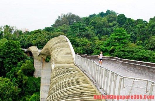 Danh sách các địa điểm đẹp khi du lịch trăng mật Singapore